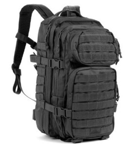 Image of Assault Pack